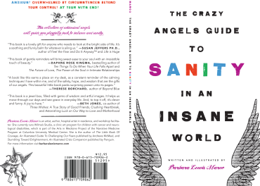 Crazy Angels Guide to Sanity in an Insane World - back and front covers