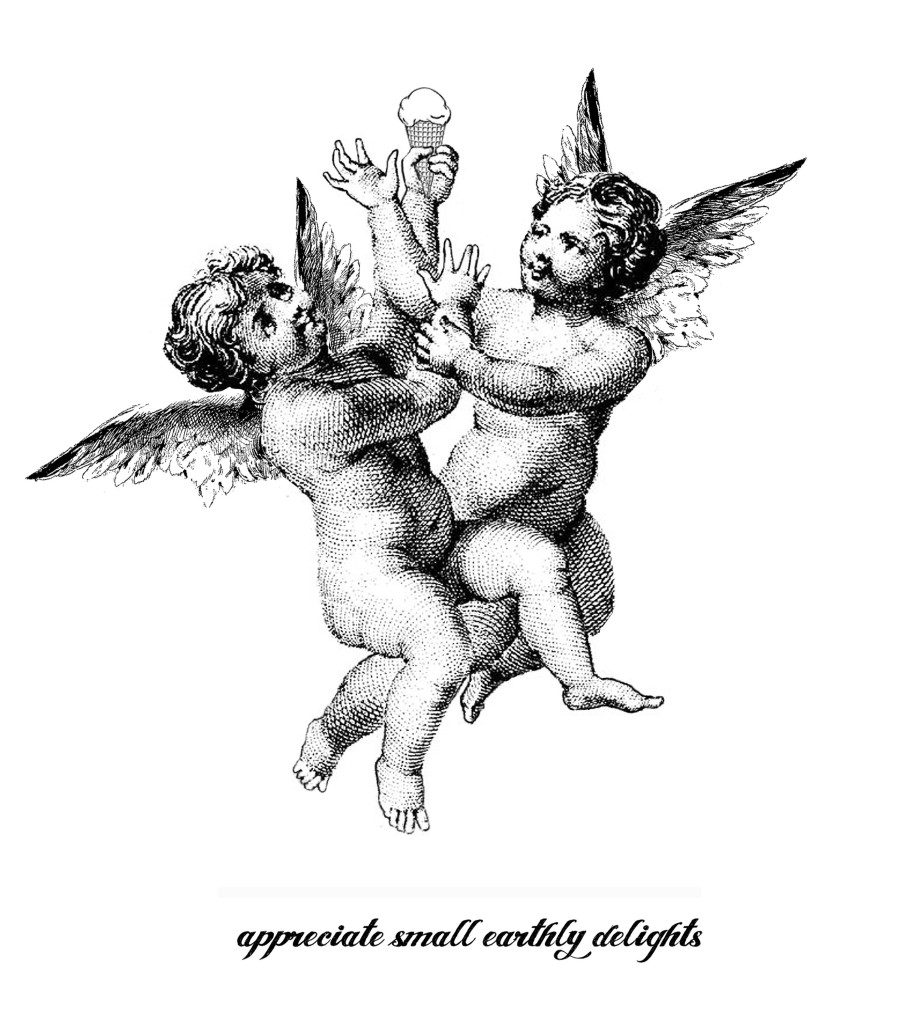 Appreciate small earthly delights - The Crazy Angels Guide to Sanity in an Insane World